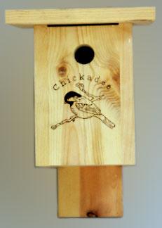birdboxf.jpg
